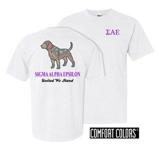 Sigma Alpha Epsilon United We Stand Comfort Colors T-Shirt