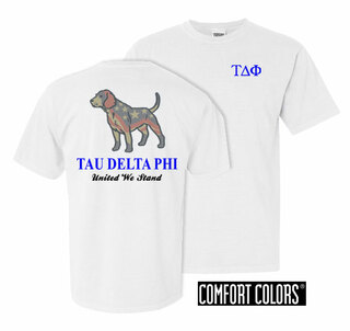 Tau Delta Phi United We Stand Comfort Colors T-Shirt