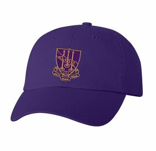 DISCOUNT-Delta Phi Epsilon Crest - Shield Hat