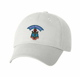 DISCOUNT-Delta Gamma Crest Hat - SUPER SALE