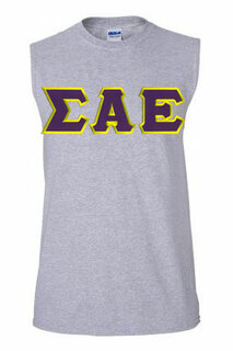 DISCOUNT- Sigma Alpha Epsilon Lettered Sleeveless Tee