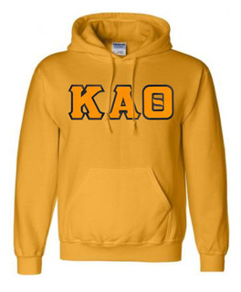 $39.99 Lettered Hoodie - On Sale $29.95