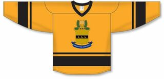 ACACIA League Hockey Jersey