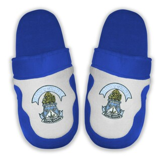 DISCOUNT-Alpha Delta Pi Crest - Shield Slippers