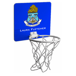 Alpha Delta Pi Mini Basketball Hoop