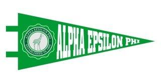 Alpha Epsilon Phi Pennant Decal Sticker