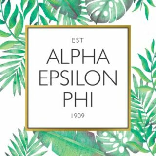 Alpha Epsilon Phi Tropical Sticker Decal