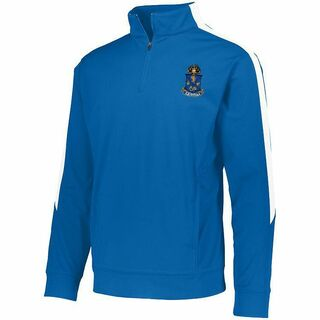 DISCOUNT-Alpha Epsilon Pi-  World Famous Greek Crest - Shield Medalist Pullover