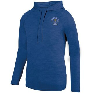 DISCOUNT-Alpha Epsilon Pi Fraternity Crest - Shield Tonal Hoody