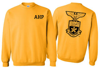 Alpha Eta Rho Lettered World Famous Greek Crewneck