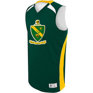 Alpha Gamma Rho High Five Campus Basketball Jersey