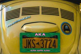 Alpha Kappa Alpha New License Plate Frame