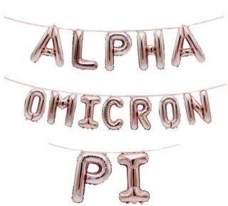 Alpha Omicron Pi Banner Balloon Set