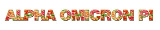 "Alpha Omicron Pi Floral Long Window Sticker - 15"" long"