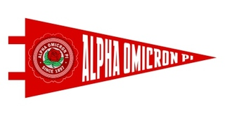 Alpha Omicron Pi Pennant Decal Sticker