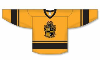 Alpha Phi Alpha League Hockey Jersey