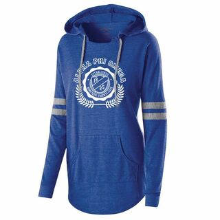Alpha Phi Omega Lowkey Pullover