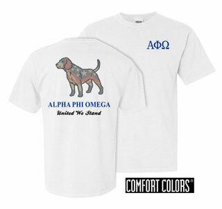 Alpha Phi Omega United We Stand Comfort Colors T-Shirt