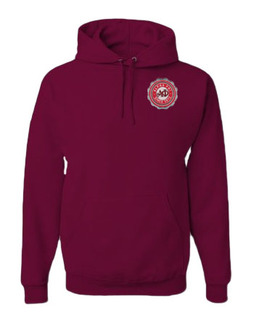 Alpha Phi Patch Seal Hooded Sweatshirt