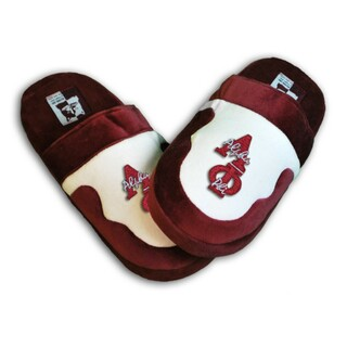 DISCOUNT-Alpha Phi Slippers