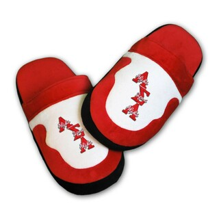 DISCOUNT-Alpha Sigma Alpha Slippers