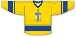 Alpha Tau Omega League Hockey Jersey