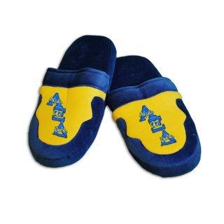 Alpha Xi Delta Slippers