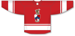 Beta Theta Pi League Hockey Jersey