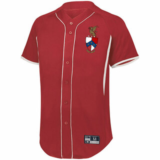 Beta Theta Pi Game 7 Full-Button Baseball Jersey