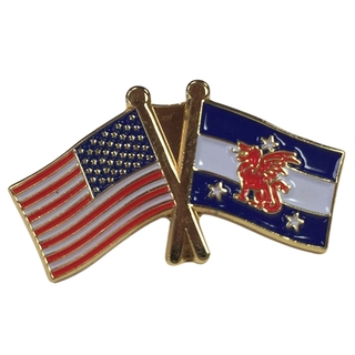 Beta Theta Pi USA Flag Lapel Pin