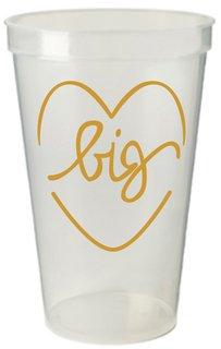 Big Sister Plastic Cup