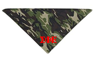 Fraternity & Sorority Camo Bandana
