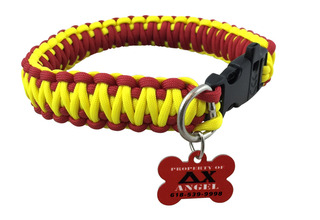 Delta Chi Paracord Dog Collar with ID Tag Attached