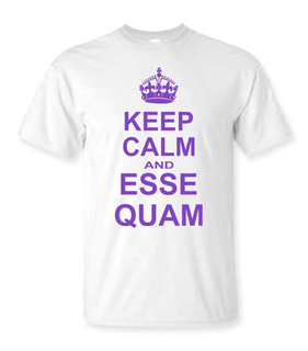 Delta Phi Epsilon Keep Calm T-Shirts