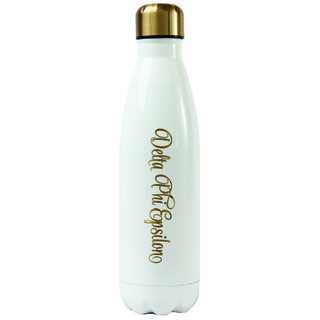 Delta Phi Epsilon Stainless Steel Shimmer Water Bottles