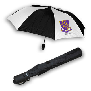 Delta Phi Epsilon Umbrella