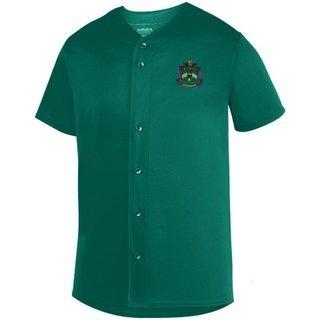 DISCOUNT-Delta Sigma Phi Fraternity Crest - Shield Sultan Baseball Jersey