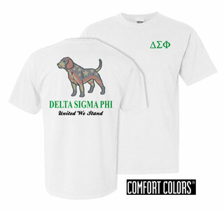 Delta Sigma Phi United We Stand Comfort Colors T-Shirt
