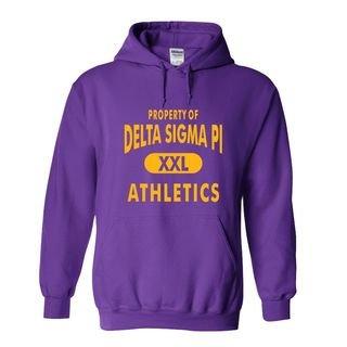 Delta Sigma Pi Athletics Hoodie