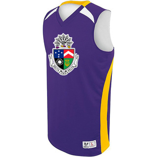 Delta Tau Delta High Five Campus Basketball Jersey
