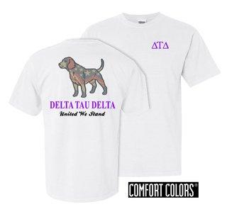 Delta Tau Delta United We Stand Comfort Colors T-Shirt