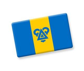 Delta Upsilon Ceramic Flag Magnet