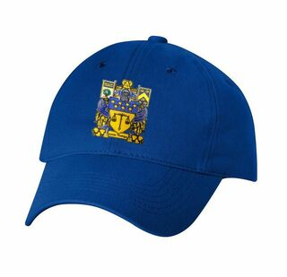 DISCOUNT-Delta Upsilon Crest - Shield Hat
