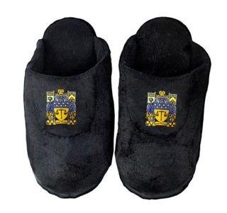 DISCOUNT-Delta Upsilon Crest - Shield Slippers