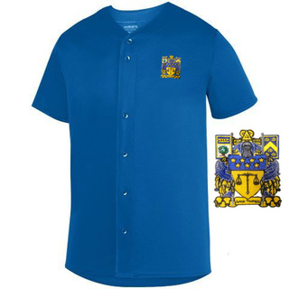 DISCOUNT-Delta Upsilon Fraternity Crest - Shield Sultan Baseball Jersey