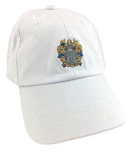 Delta Upsilon Fraternity Discount Crest - Shield Hats