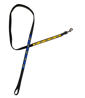 Delta Upsilon Long Dog Leash