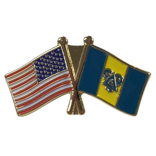 Delta Upsilon USA Flag Lapel Pin