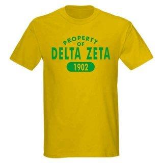 Delta Zeta Property of Est. Shirt