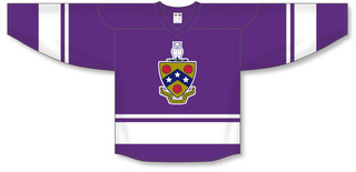 FIJI Fraternity League Hockey Jersey